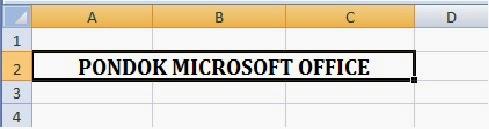contoh hasil penggunaan merge cell  pada Excel
