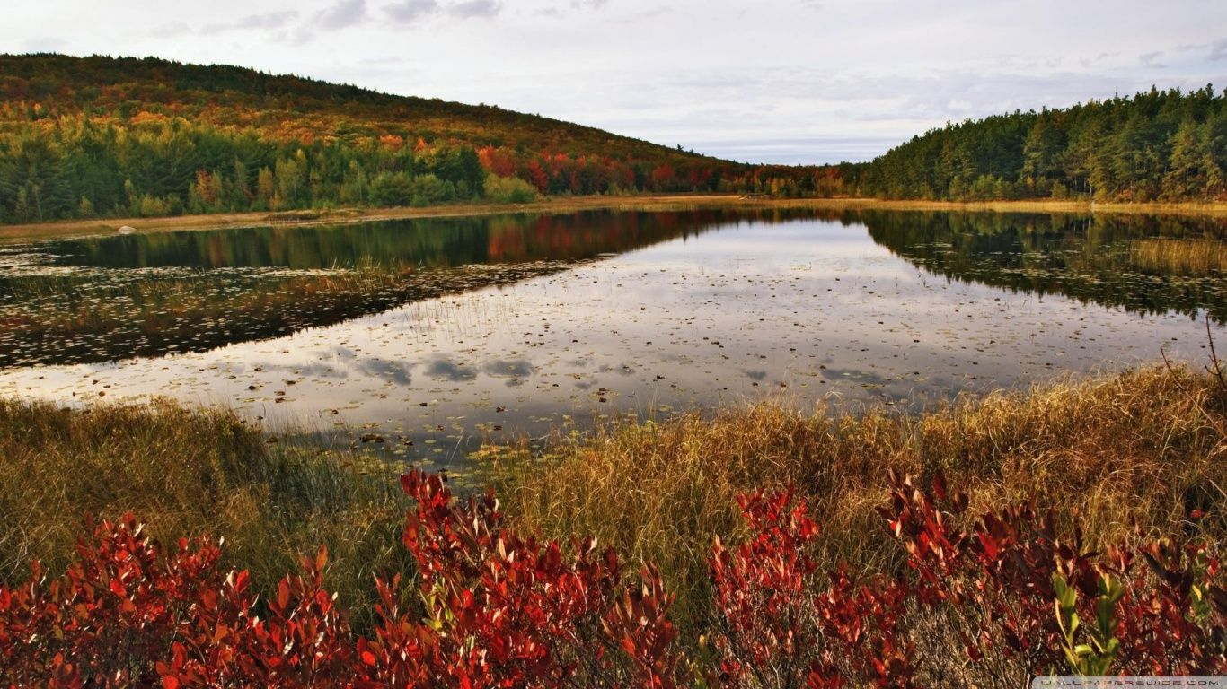 Breakneck Pond, Acadia National Park, Maine HD   wallpapers
