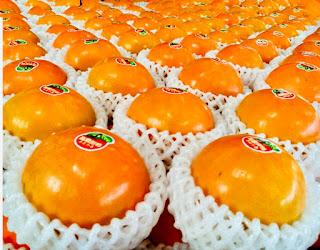 8A級甜柿|偲僩農場