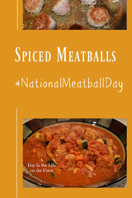 Spiced Meatballs in Tomato Sauce pin