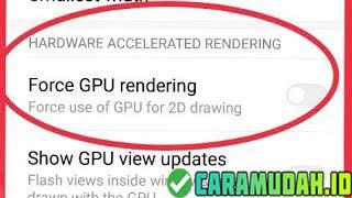 Aktifkan Feature Force GPU for 2D Drawing