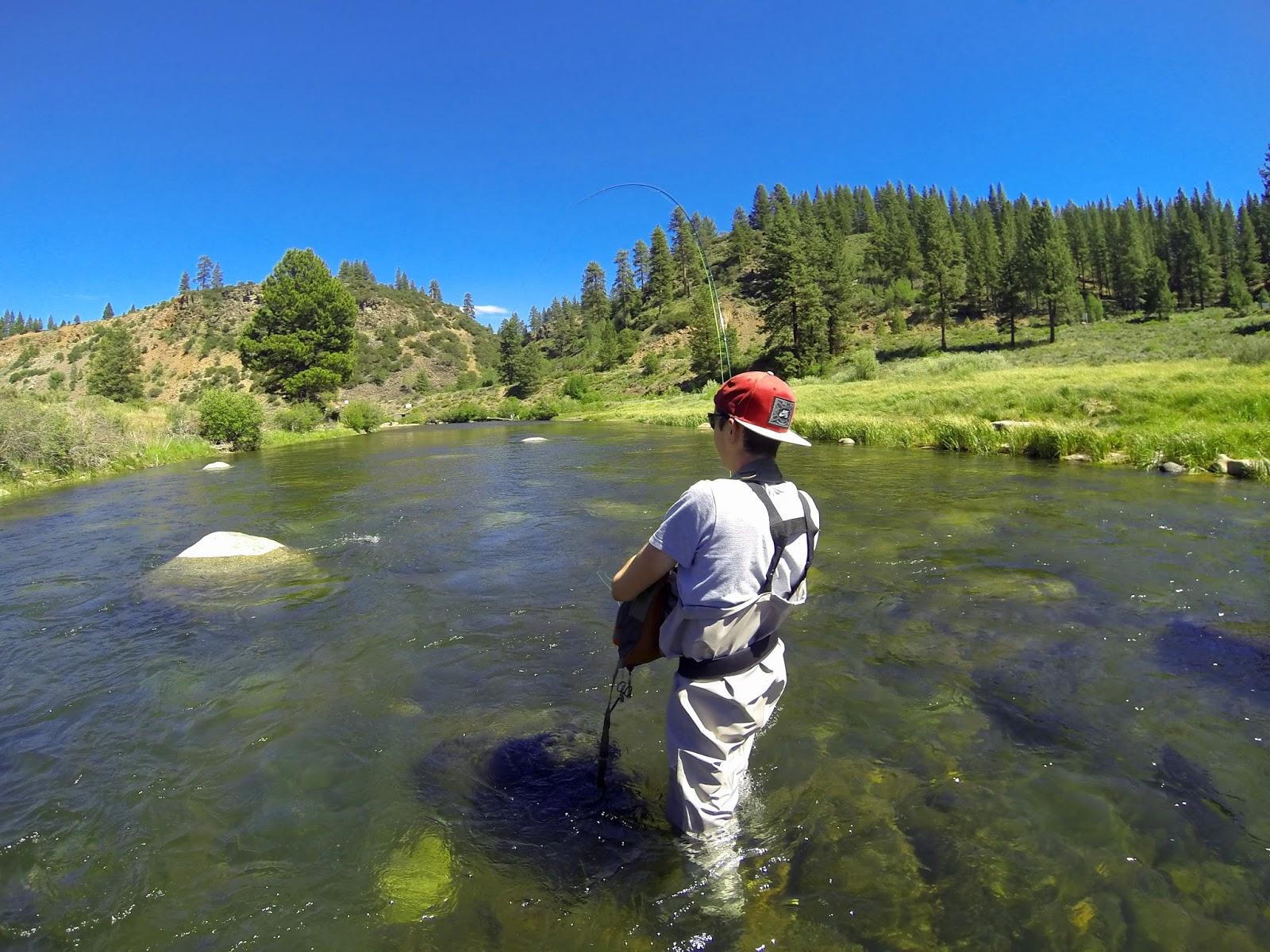 Jon baiocchi fly fishing news tahoe truckee fly fishers for Tahoe fly fishing