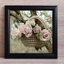 Roses, Flowers Framed Print wall frame in Port Harcourt Nigeria