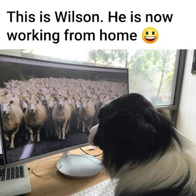 Working from home..