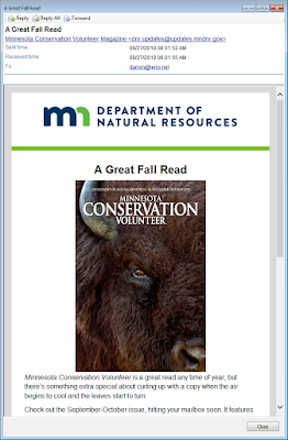 Software screen shot of a html email in full window view, showing an image of a buffalo.