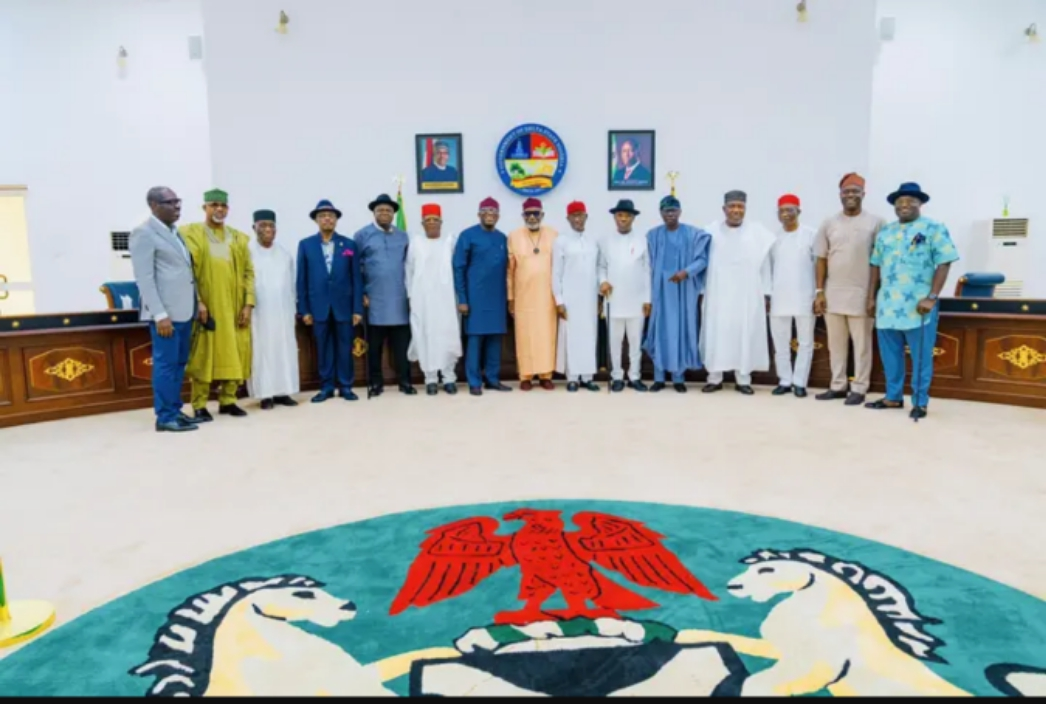 List of Nigerian Governors and the Courses They Studied in School