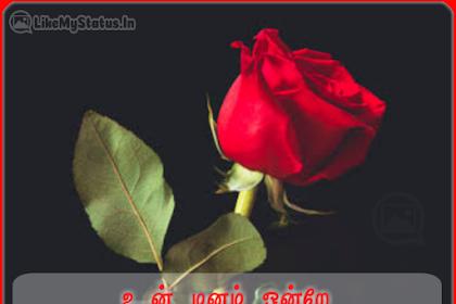 உன்னை வீழ்த்தும் ஒரே ஆயுதம்... Tamil Quote For Life With Image....
