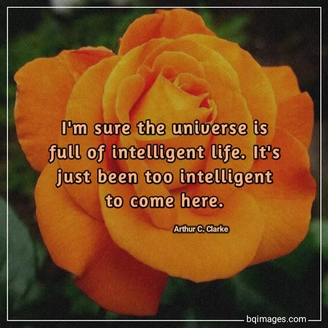 live life happy quotes