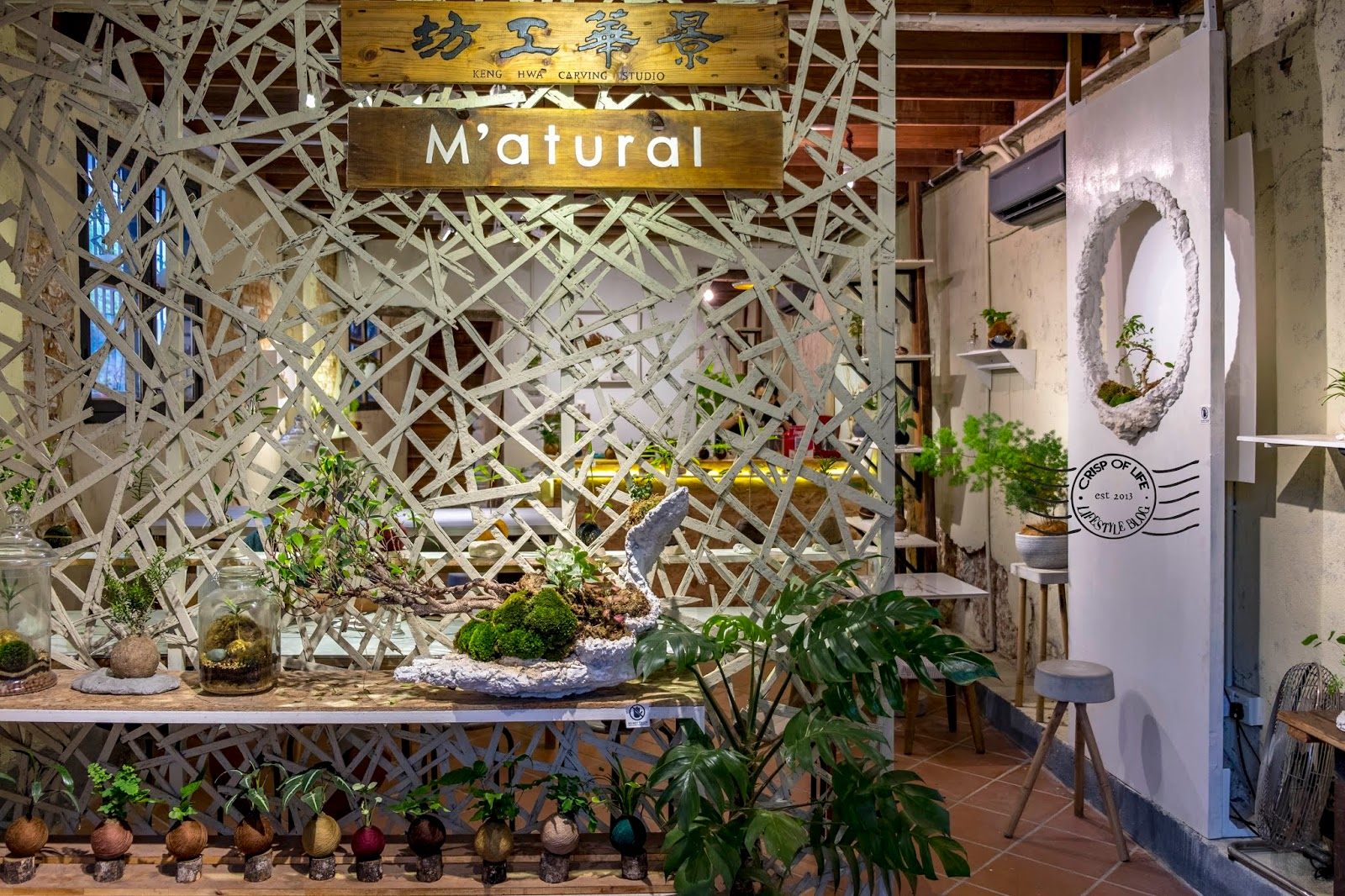M'atural - A contemporary bonsai studio/cafe @ Lorong Carnavon, Penang