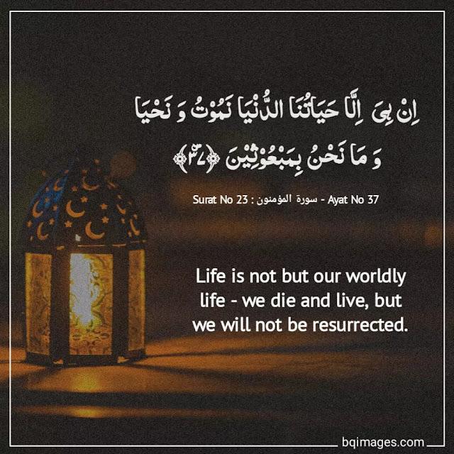 quran verses in english