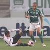 www.seuguara.com.br/Campeonato paulista 2021/Palmeiras/São Paulo/decisão/