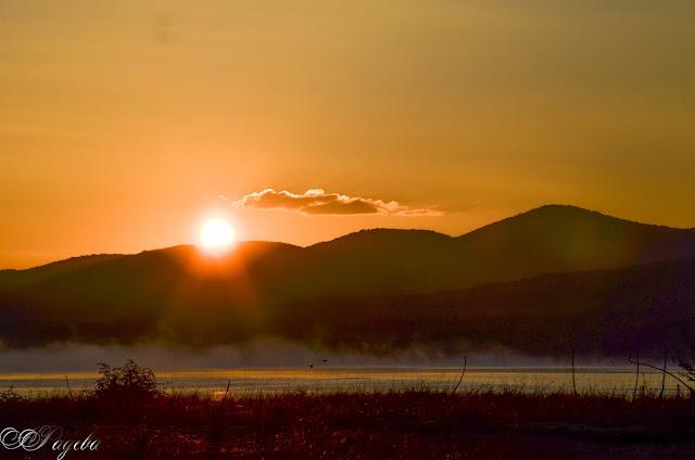 Сутрешни-омари-Mornings-fumes