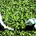 Copa Aramis Polli: Quatro times estão invictos até o momento
