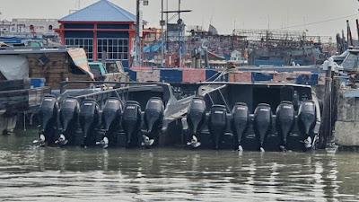 Patroli Laut Bea Cukai Gagalkan Aksi Penyelundupan Rokok Ilegal Di Wilayah Perairan Riau
