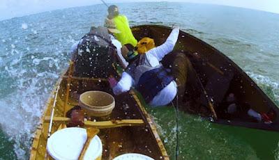 Hiu serang pemancing di perahu