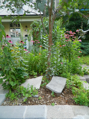 The Pocket front garden clean up before by Paul Jung Gardening Services Toronto