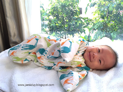 Baby in a Zipadee Zip Wearable Blanket
