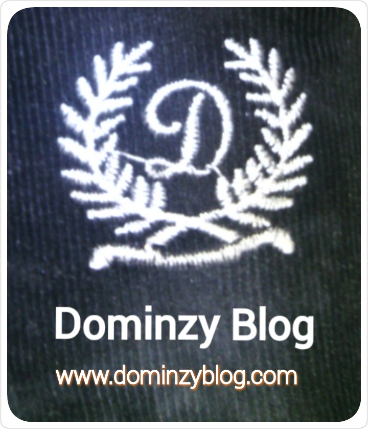 Dominzy Blog