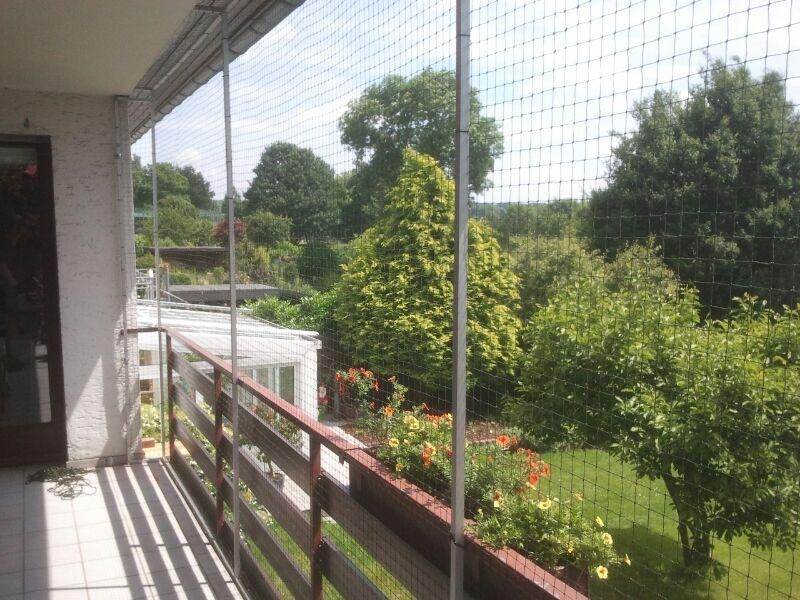 Wie Bringe Ich Ein Katzennetz Am Balkon An Katzennetz Balkon