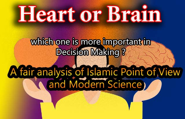 How Heart Affect Your Decision Making Capabilities