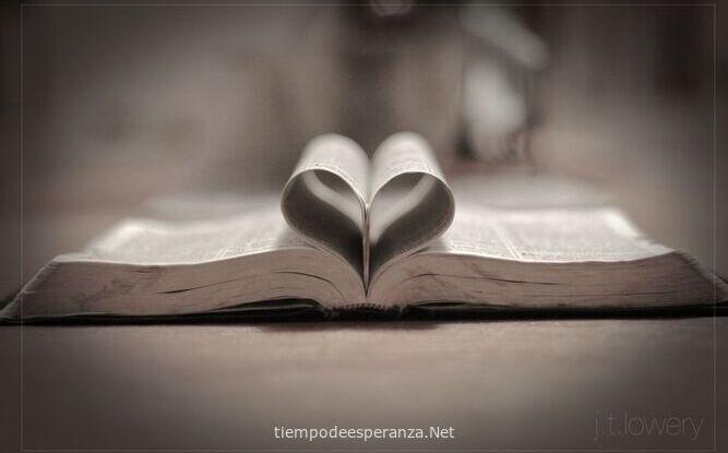 Biblia abierta formando un corazón