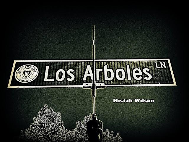 Los Arboles Lane, San Marino, California by Mistah Wilson