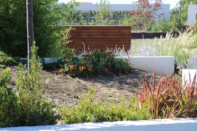 firma constructii exterioare, firma amanajari gradini bucuresti ilfov, gradina moderna, peisagist, proiectare gradini, amenajare curte, gradina designer