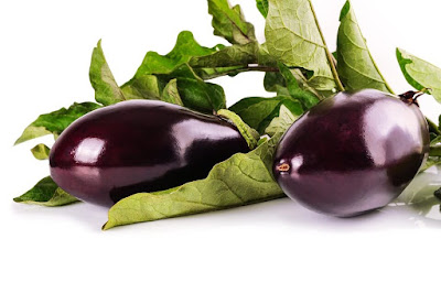 Eggplant Vegetables Business Opportunities