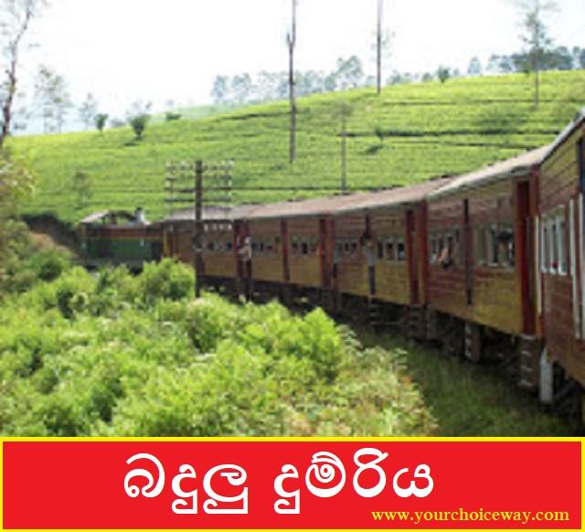 බදුලු දුම්රිය (Badulu Train) - Your Choice Way