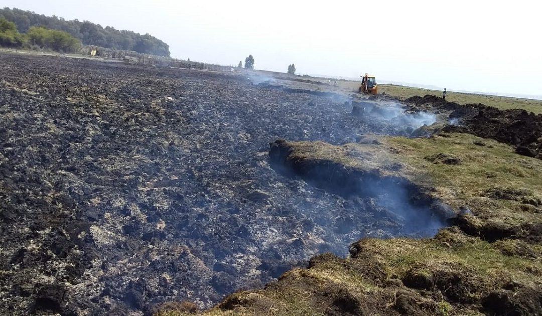 مندوبية الحافي تكشف عن حقيقة حريق الجزء الشمالي الجاف من المرجة الزرقاء