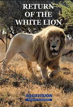 Return of the White Lion (2008)