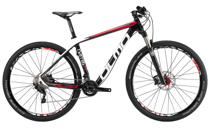 Bicicletta Frejus 29