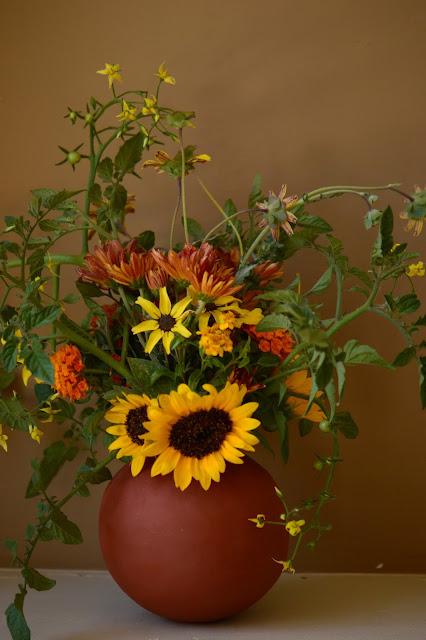 monday vase meme, chrysanthemum, lantana, berlandiera, tomato, sunflower, small sunny garden, flower arranging, desert garden, amy myers