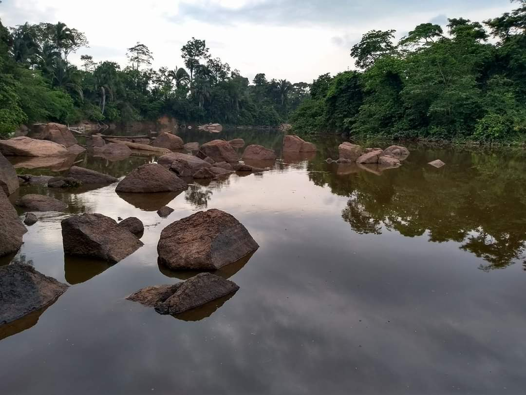 Vereador sugere convidar a Vale para apresentar medidas de contingência ao rio Parauapebas, em caso de acidentes.