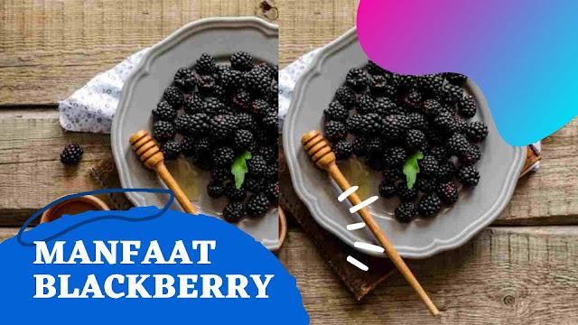 10 Manfaat Buah Blackberry yang Tidak Boleh Diabaikan