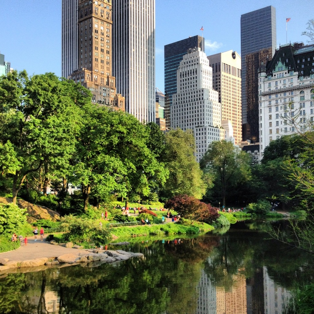 Cetral Park: Central Park Summer :: Instagram Pics