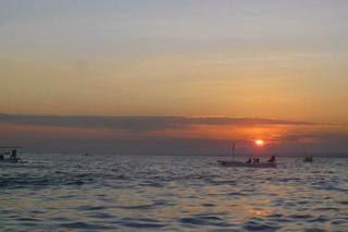 Lovina-dolphin-Bali-tours