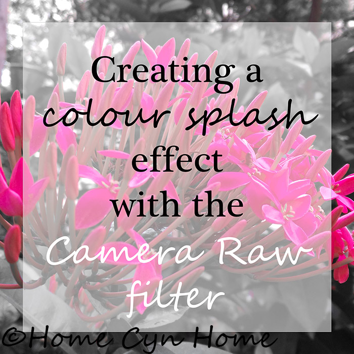 This tutorial will teach you how to create a quick and easy colour splash effect using the Camera Raw Filter in Photoshop CC