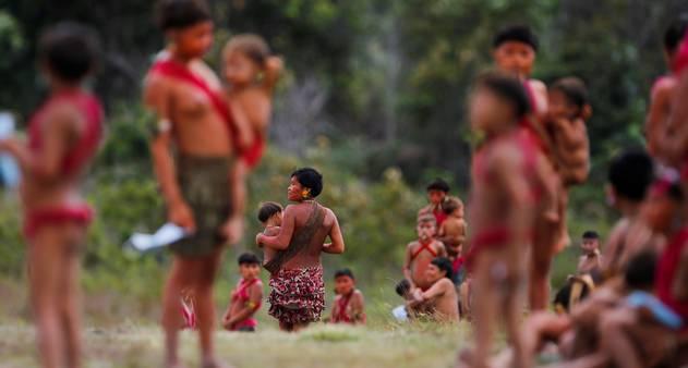 """""""Vamos matar os Yanomami"""": relatos de um povo sob ataque"""