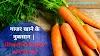 गाजर खाने के नुकसान | Disadvantages of Carrot