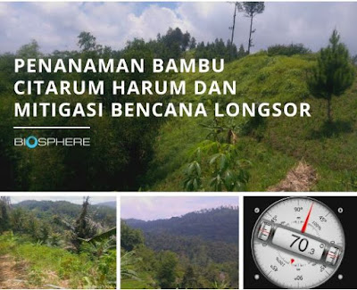 Bambu, Banjir dan Biosphere