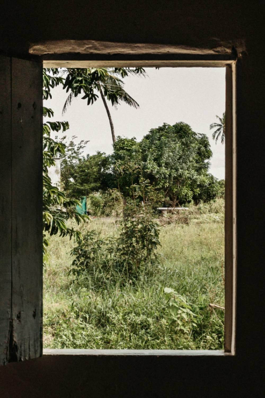 literatura paraibana poesia manhã esperanca abrir janelas