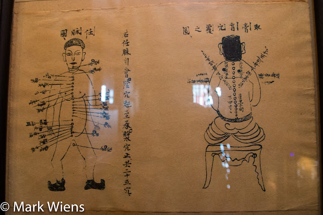 Opening hours Museum of Traditional Vietnamese Medicine