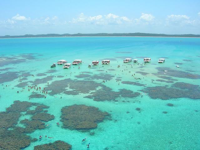 Melhores tours de um dia saindo de Recife - Maragogi