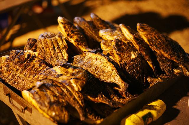 Θεσπρωτία: Το δυνατό ατού της Θεσπρωτίας οι ιχθυοκαλλιέργειες- Με επιτυχία η γιορτή τσιπούρας στη Σαγιάδα