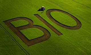 http://reporterre.net/Tempete-a-l-INRA-autour-d-un-rapport-sur-l-agriculture-biologique