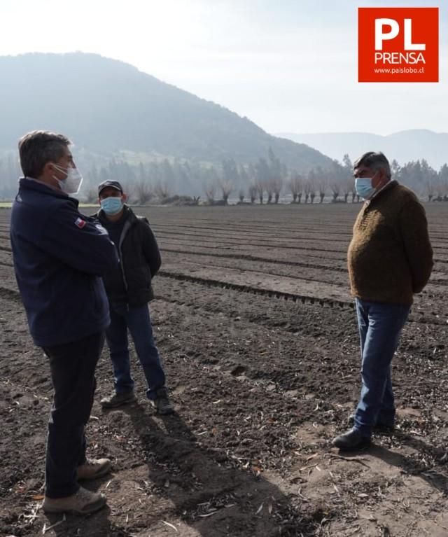 Indemnizan a productores de O'Higgins que perdieron cultivos tras lluvias extemporáneas