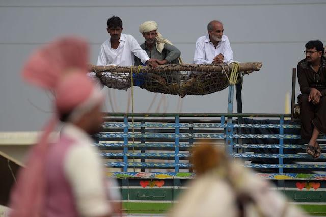 Horse riders skills during Tent Pegging ar Kot Fateh Khan mela