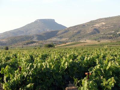 вид на горы и виноградники Немеи