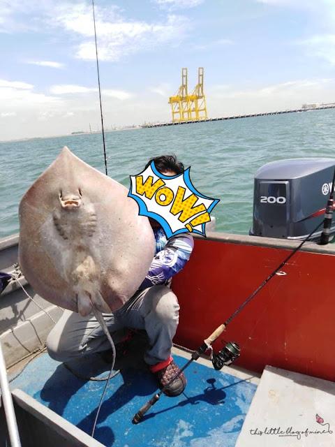 Semalam Suami Mancing Dapat Ikan Pari Besar! Alhamdulilah